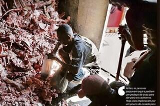 Brasile, incubo Covid e povertà: alla ricerca di cibo tra le carcasse di animali