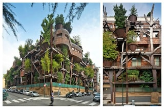 Torino: la casa sull'albero restando in città
