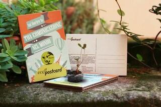 Eco-Postcard: la cartolina ecologica che fiorisce se piantata