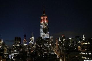Il leone Cecil conquista l'Empire State Building