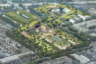Silicon Valley: sarà qui il tetto verde più grande del mondo