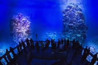 Impressioni subacquee: come guardare la Grande Barriera Corallina senza bagnarsi