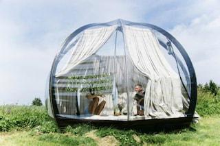 Gita fuori porta: ecco la tenda trasparente per vedere il mondo a 360° in totale privacy