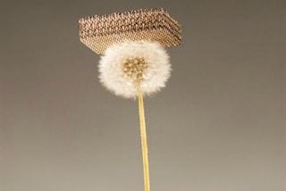 Non è la piuma né il polistirolo: ecco il nuovo materiale più leggero del mondo