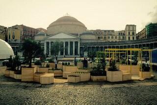 Napoli: spunta un orto a Piazza del Plebiscito