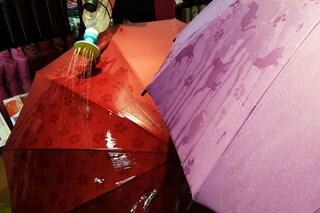 Giappone: ecco gli ombrelli che vi faranno amare la pioggia