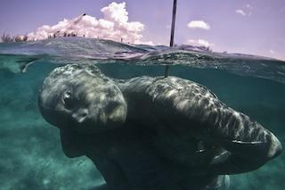 Ocean Atlas, la scultura sottomarina più grande del mondo