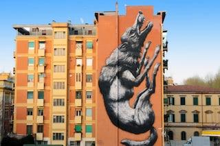 Roma: la street art che dà voce agli animali