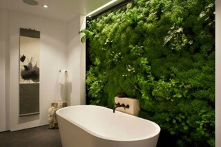 Moss Walls: la parete che trasforma la vostra casa in un bosco