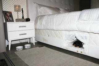Dormire col cane: dal Brasile arriva la prima cuccia da materasso