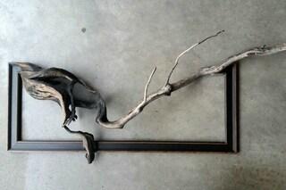 Trova dei vecchi rami e gli dà una seconda vita: il risultato è spettacolare