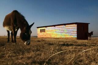 Sud Africa: ecco la fattoria fatta tutta di CD riciclati