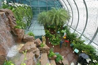 Piscine sui tetti, cinema gratis e giardini tropicali: ecco i migliori aeroporti del mondo