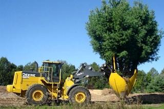Riesce a spostare un albero senza tagliarlo: ecco di cosa si tratta