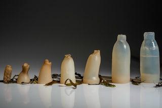 Niente plastica né vetro: ecco di cosa saranno fatte le bottiglie