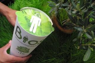 Napoli prima in Italia: arriva l'urna biodegradabile per diventare piante dopo la morte