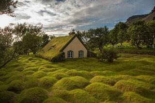 Ricoperte di vegetazione: ecco le case nella natura più suggestive al mondo