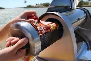 Pic-nic d'estate: ecco il primo barbecue portatile ad energia solare