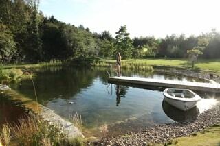 Ecco come creare una piscina biologica fai da te