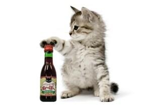 Mai più bevute da soli: ecco il primo vino per gatti