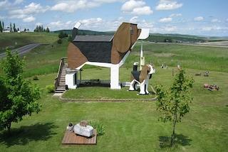 Benvenuti al Dog Bark Park Inn, dove dormire all'interno di un beagle