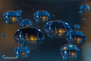 Il mondo racchiuso in una goccia d'acqua: l'arte di Dusan Stojancevic