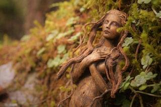 Trasforma le radici degli alberi in capolavori d'arte: ecco il talento di a Debra Bernier