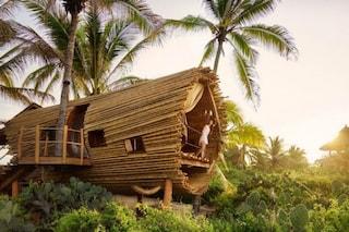 Ecco la casa sull'albero più lussuosa del mondo