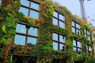 Parigi più verde entro il 2020: una legge permette a tutti di avere un giardino urbano