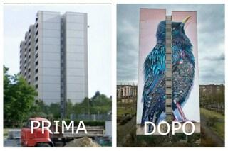 Ecco come la street art cambia il volto delle città