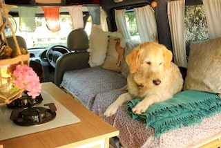 Ristruttura un vecchio furgone per viaggiare in tutto il mondo con il suo cane