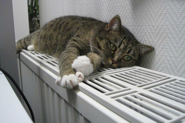 10 modi per riscaldare casa senza spendere troppo - Riscaldare casa in modo economico ...