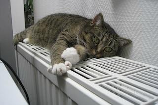 10 modi per riscaldare casa senza spendere troppo