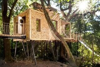 La casa sull'albero più lussuosa di sempre: farebbe invidia anche a Tarzan