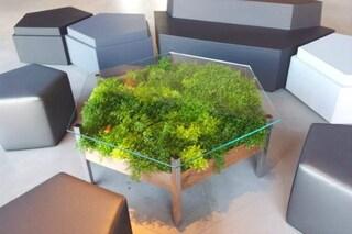 Living table: il tavolo vivente per avere sempre l'orto in casa