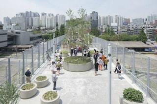 Seul, la sopraelevata abbandonata diventa un parco pubblico con 24.000 piante