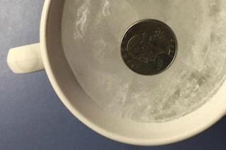 Un trucco geniale: ecco perché bisogna mettere una moneta nel frigo prima delle vacanze