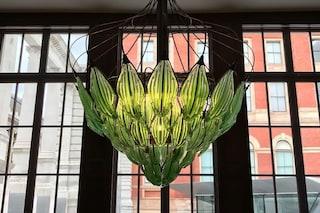 Il primo lampadario vivente: la geniale invenzione che purifica l'aria