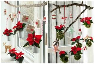 Riciclo creativo con le Stelle di Natale: come decorare casa a festa
