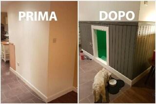 Come trasformare il sottoscala in una spaziosa stanza per il cane