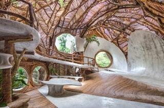 IK LAB: il museo del nipote di Peggy Guggenheim a Tulum è una casa sull'albero