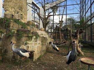 Lo Zoo di Napoli, patrimonio architettonico da scoprire