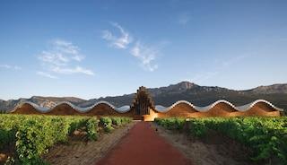 L'architettura del vino: le più belle cantine in giro per il mondo