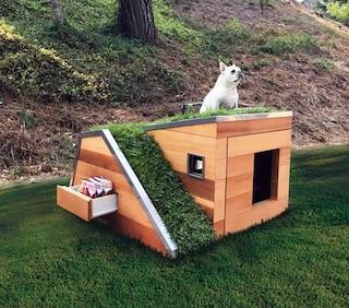 La cuccia per cani più sostenibile al mondo