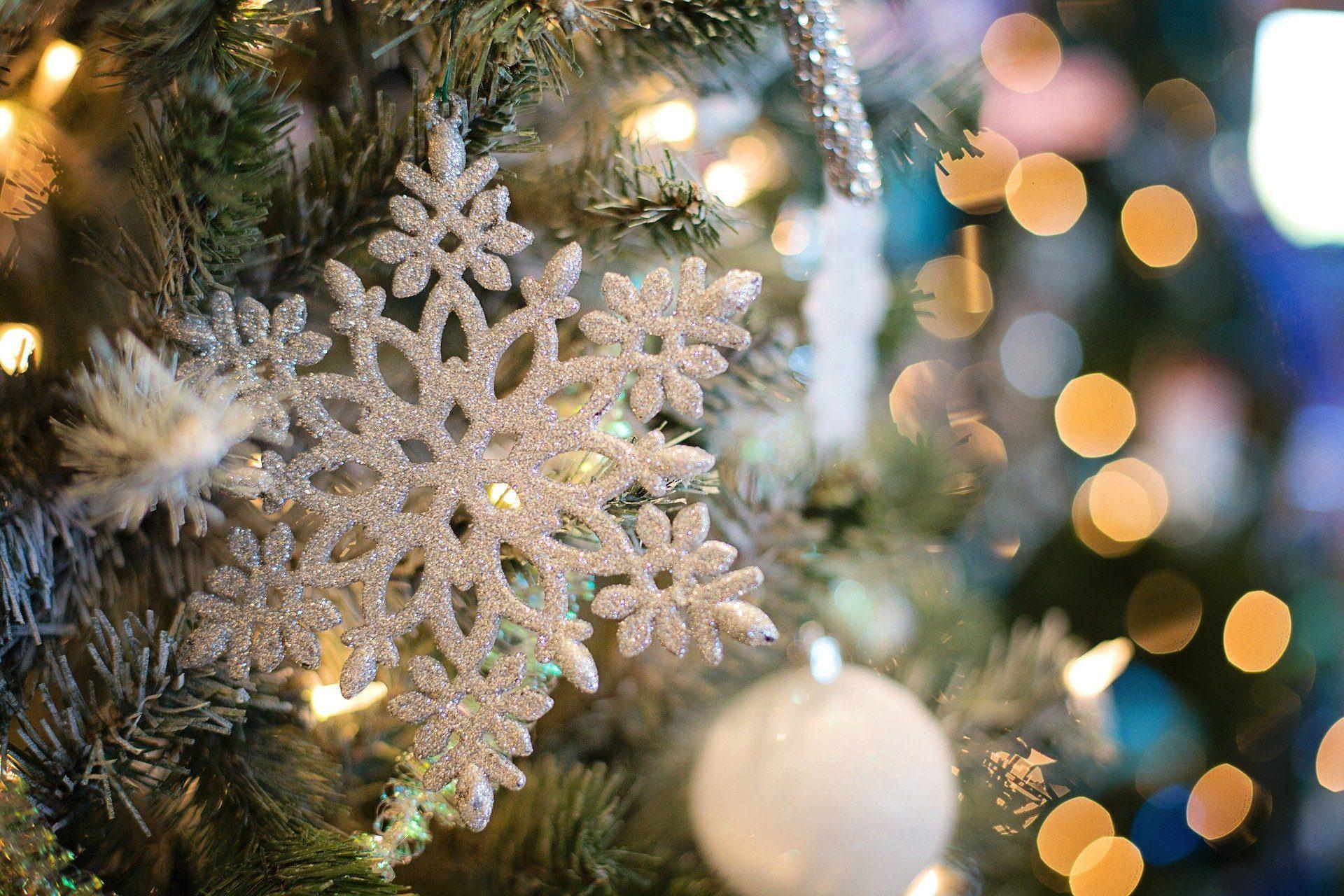Palline Di Natale Con Rametti addobbi di natale 2019: tendenze e colori per decorare la