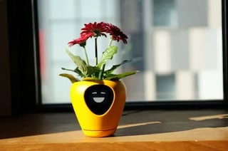 Lua, il vaso intelligente che trasforma ogni pianta in un tamagotchi