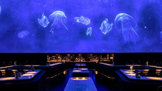 Alchemist, il ristorante di Copenaghen in stile planetario unico al mondo