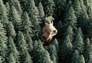 Bert, le mini case prefabbricate per vivere sugli alberi
