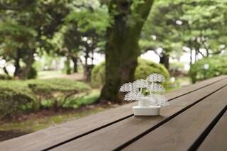 Grid-Bonsai, il bonsai moderno che si stampa in 3D e si può anche potare