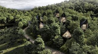 A Dawson Lake le moderne case sugli alberi per un'esperienza di vita nei boschi unica
